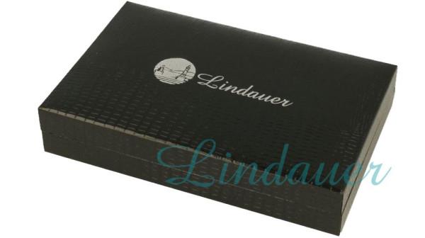 Lindauer Kunstleder-Etui D15L